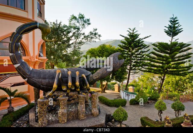 Scorpion Statue & 2 Norfolk-Kiefern im Tempel auf Hügel in Maesai Thailand mit Blick auf Berge von Myanmar Stockbild