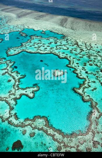 Luftaufnahmen der schönen Heart Reef in das spektakuläre Great Barrier Reef in der Nähe der Whitsunday Stockbild