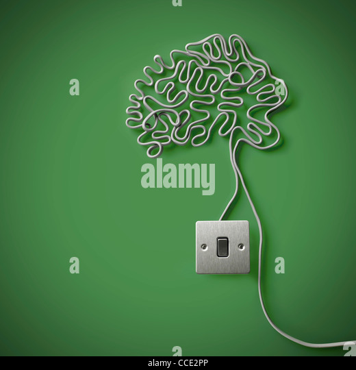 Das menschliche Gehirn gemacht vom grauen Stromkabel mit einem Lichtschalter Stockbild