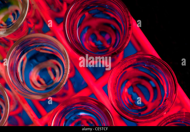 Rack mit Reagenzgläsern, enthält eine Flüssigkeit, mit rotem und blauem Licht beleuchtet. Stockbild