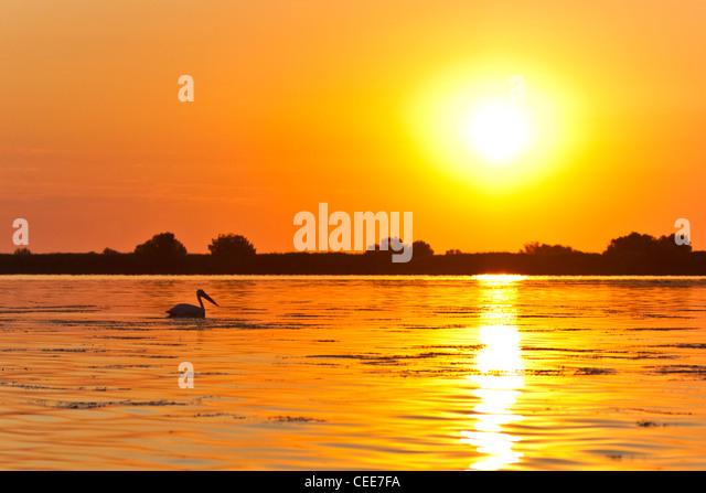 Sonnenaufgang im Donaudelta Stockbild