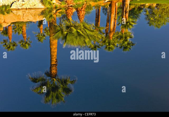 Teich im Desert Willow Golfresort, Palm Desert, Kalifornien Stockbild