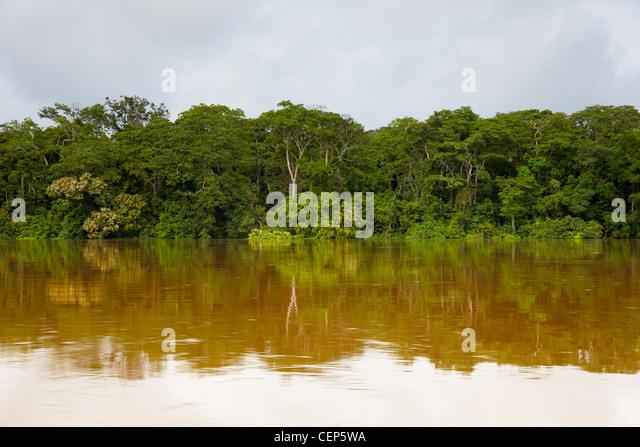 Sangha-Fluss, Republik Kongo, Afrika Stockbild