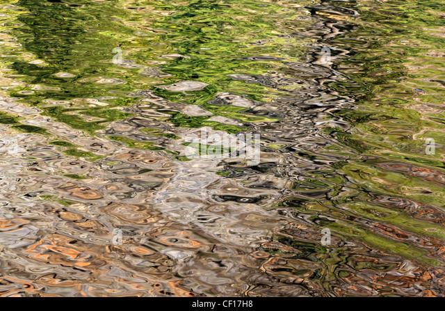 Spiegelungen im Wasser Stockbild