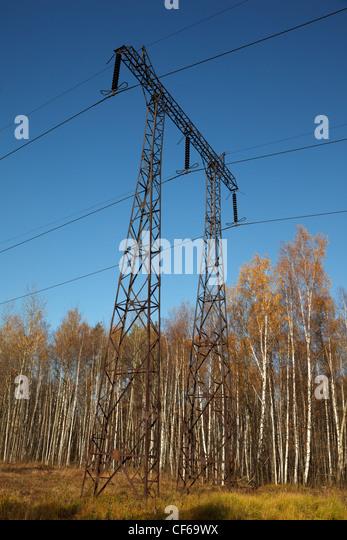 Elektrische Leitung im herbstlichen Wald. Anzahl der stützen oder Cocktail. Strom. Stockbild