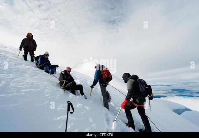 Kletterer auf dem Gletscher des Volcan Cotopaxi, 5897m, der höchste aktive Vulkan der Welt, Ecuador, Südamerika Stockbild