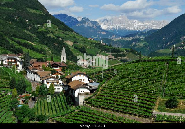 Weinberg und Häuser unter bewölktem Himmel Bozen Rentsch, Dolomiten, Südtirol, Alto Adige, Italien, Stockbild
