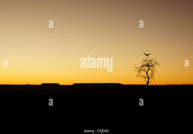 Sonnenaufgang auf Madagaskar Stockbild