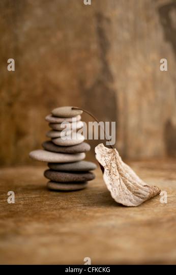 Gestapelten Steinen und ein Blatt in einer Erde getönten Einstellung. Stockbild