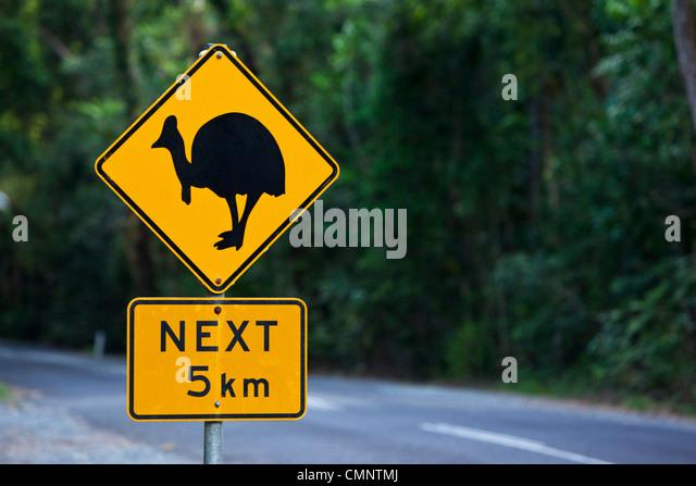 Kasuar Kreuzung Zeichen.  Daintree Nationalpark, Daintree, Queensland, Australien Stockbild