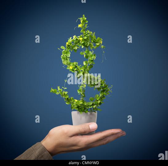 uns Dollar wachsendes Konzept Stockbild