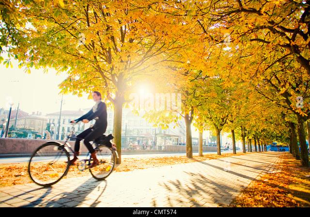 Mann auf Fahrrad Stockbild