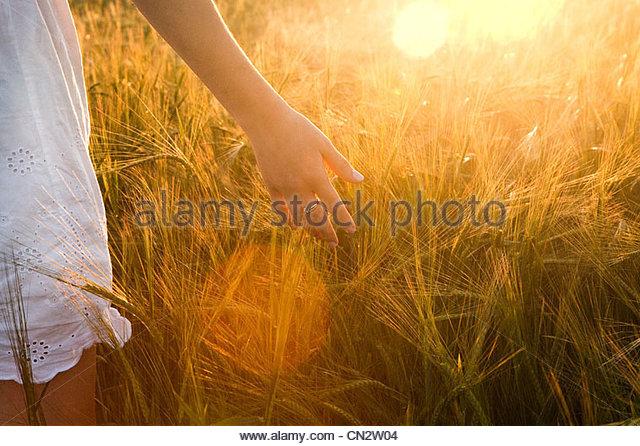 Nahaufnahme von junge Frau im Gerstenfeld Stockbild