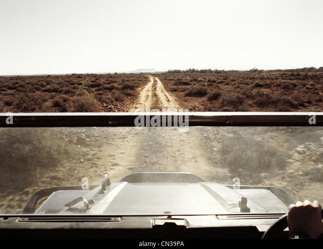 Blick vom Fahrzeug auf safari Stockbild
