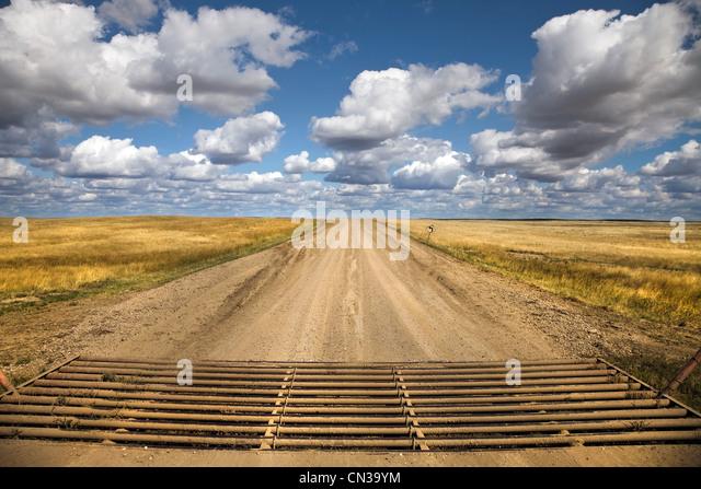 Texas-Tor, Landstraße Stockbild