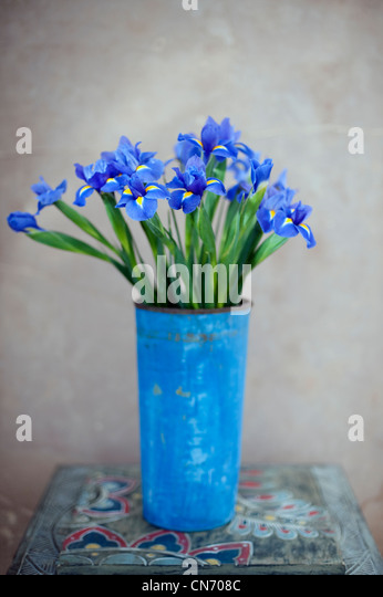 Iris Blumen in blau lackiert rostigem Metall-Topf. Stockbild