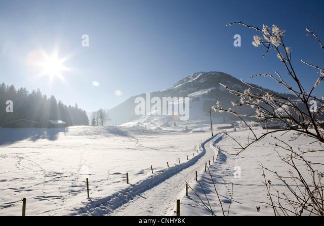 Verschneite Landschaft, Kirchberg, Tirol, Österreich Stockbild