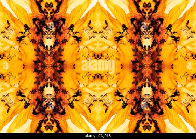 Polierte Scheibe des Lodolite / Landschaft Quarz - symmetrische Muster durch Wiederholung des Bildes Stockbild