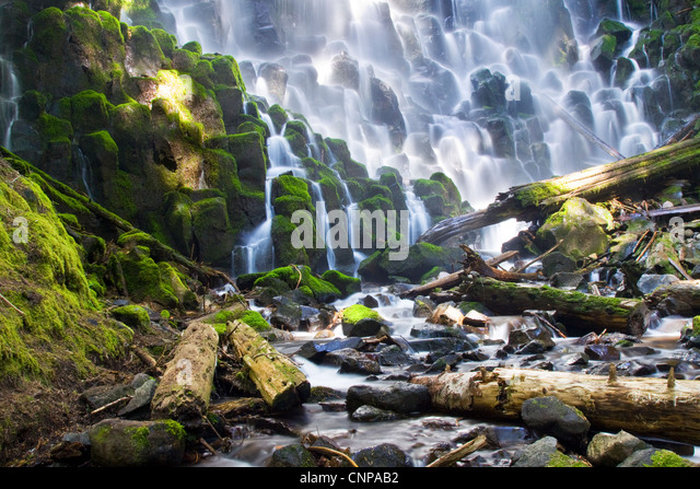 Ramona Falls befindet sich in Oregon Mt Hood National Forest Stockbild