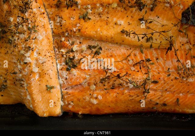 Gebackene Forelle, close-up - Stock-Bilder