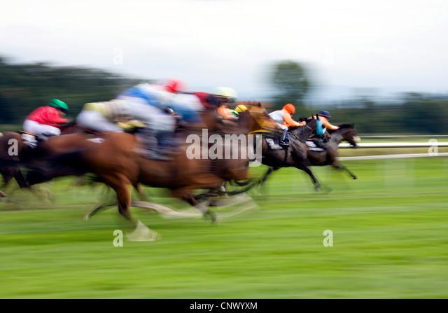 Pferderennen Deutschland