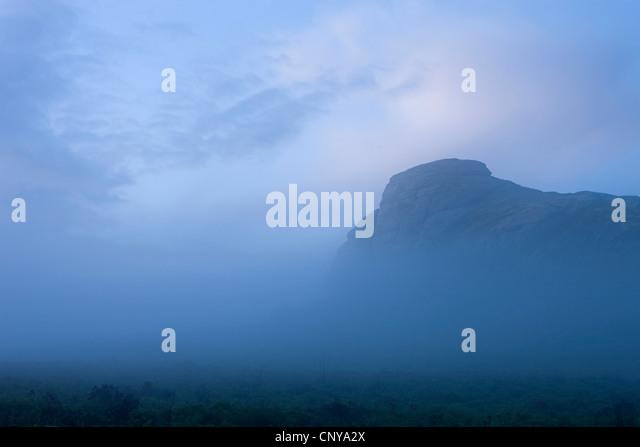 Haytor umgeben von Nebel an einem stimmungsvollen Sommerabend, Dartmoor, Devon, England. Sommer (Juli) 2010. Stockbild