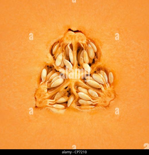 Nahaufnahme einer Cantaloupe-Melone auf der Innenseite Stockbild