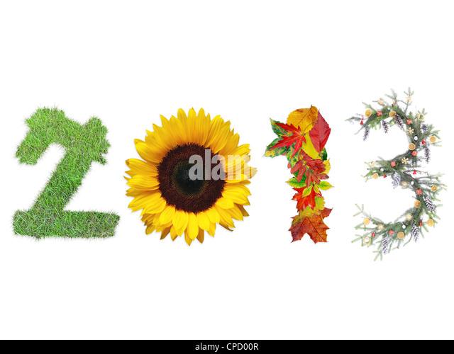 2013 Ziffern gemacht frische Gräser, Sonnenblumen, Toten fallen Blätter und Weihnachten Kranz vertreten Stockbild