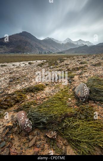 Die fünf Schwestern von Kintail und Algen bedeckt Felsen, Glen Sheil, Highlands, Schottland, Vereinigtes Königreich Stockbild