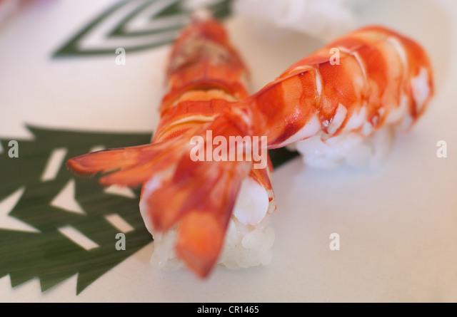 Nahaufnahme von Garnelen sushi Stockbild