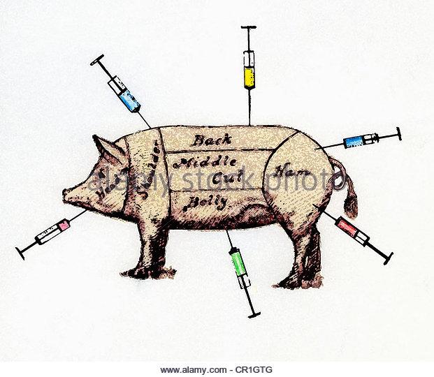 Schwein als Gelenke Fleisch gekennzeichnet mit Spritzen stecken in - Stock-Bilder