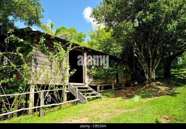 "Comandancia De La Plata, Fidel Castros ehemaliger Sitz in der ""Sierra Maestra"", heute ein Museum, Santo Stockbild"