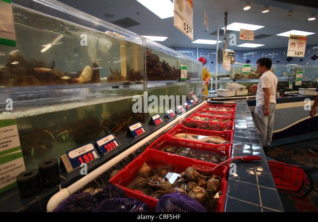 Live Meeresfrüchte in T & T chinesischen Markt in Toronto, Kanada Stockbild