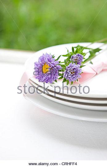 Blume auf Platte Stockbild
