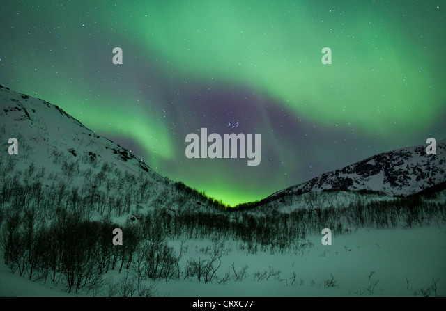 Das Nordlicht Aurora Borealis füllen den Himmel am Kvaloya am Polarkreis in der Nähe von Tromsø, Stockbild
