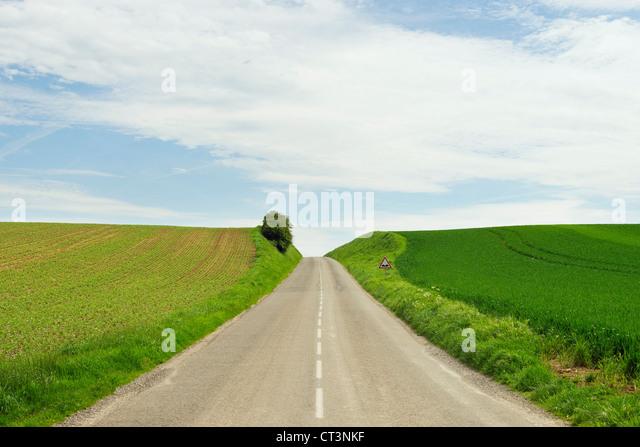 Landstraße zwischen Kornfeldern Stockbild