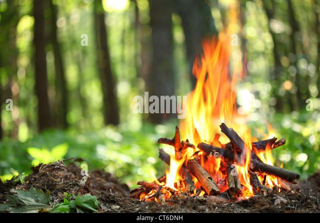 Lagerfeuer im Wald. Stockbild
