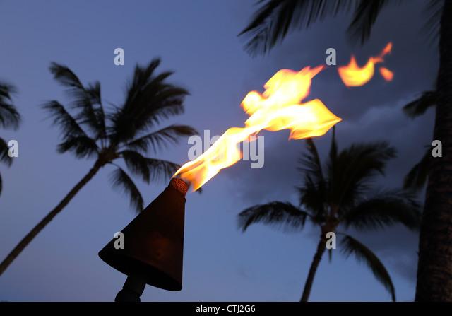Brennende Fackel und Palmen Bäume in der Nacht, Hawaii Stockbild