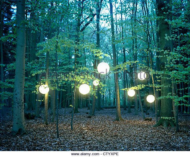 Laternen hängen von den Bäumen im Wald Stockbild