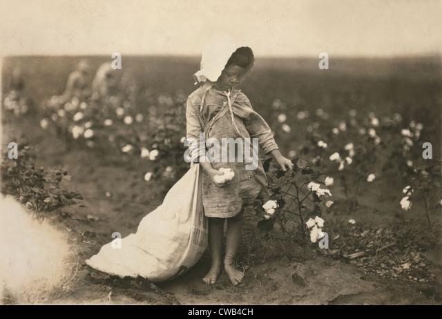 Kinderarbeit, ein junges Mädchen Baumwollfeldern, Vera Hill, 5 Jahre alt nimmt 25 Pfund ein Tag, Comanche County, Stockbild