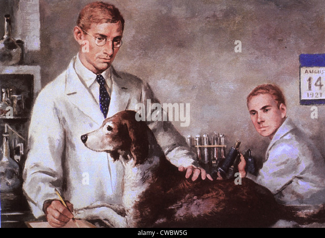 Frederick Banting und Charles Best, mit einem diabetischen Hund, den sie durch Injektionen des Hormoninsulin am Stockbild