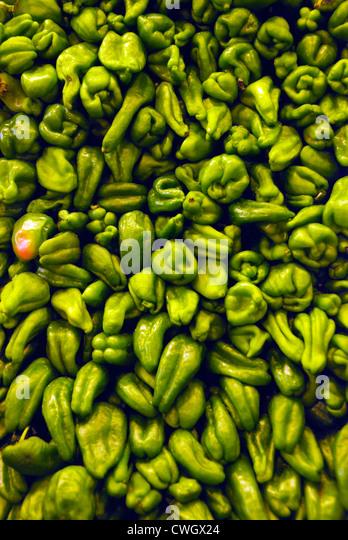 Scotch Bonnet grüne Paprika auf Verkauf im spanischen Markt Stockbild
