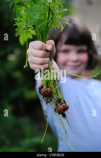 Nach Hause angebauten Karotten und Kind Stockbild