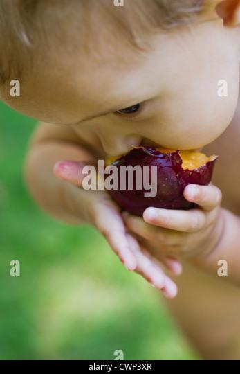 Baby Mädchen essen Pflaume, beschnitten Stockbild
