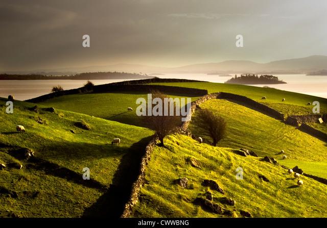 Wände aus Stein auf grasbewachsenen ländlichen Hügel Stockbild