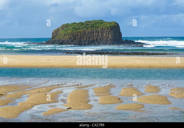 Stack-Insel, Minnamurra, New South Wales, Australien Stockbild