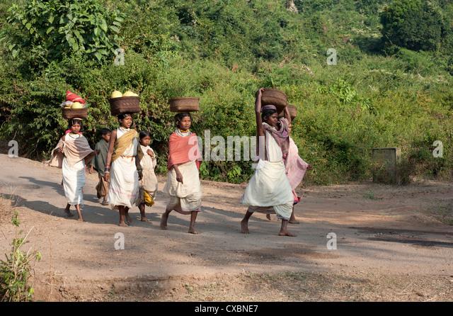 Dunguria Kondh Stammesfrauen barfuß auf den Markt, die mit Körben auf ihren Köpfen, Bissam Cuttack, Stockbild