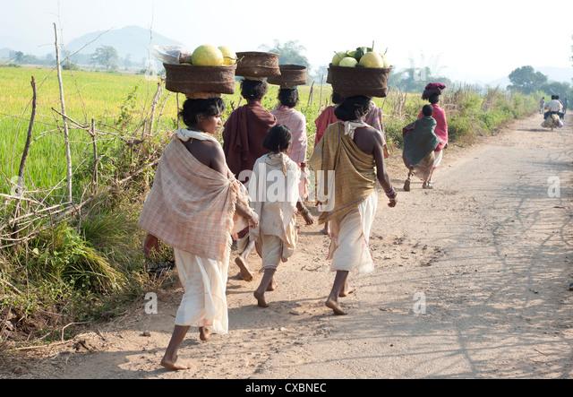 Dunguria Kondh Stammesfrauen barfuß zu Tribal Markt tragen Körbe mit Produkten auf ihren Köpfen, Stockbild
