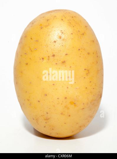 Rohe Kartoffel Stockbild