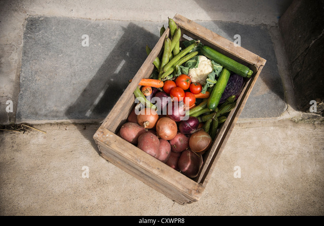 Holzkiste mit Gemüse Stockbild